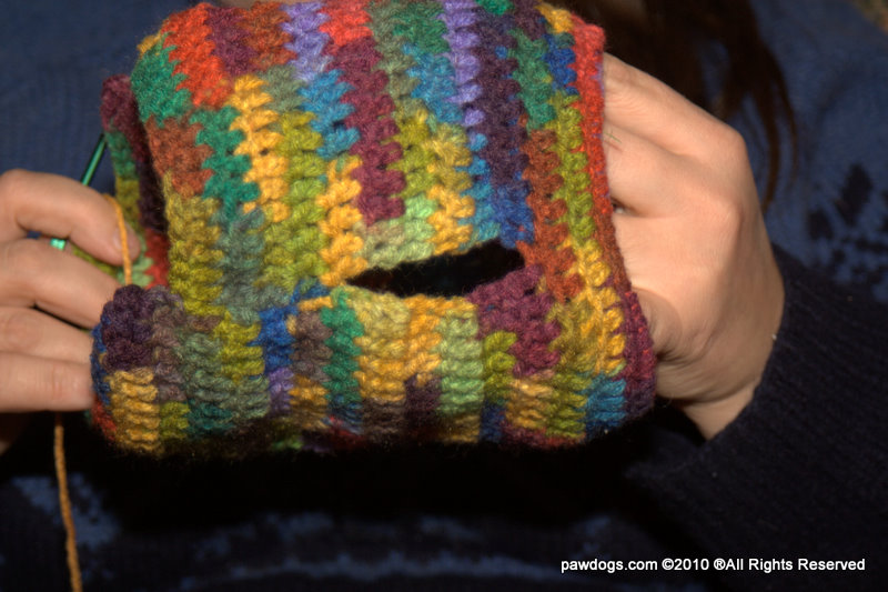 how to make a dog sweater crochet
